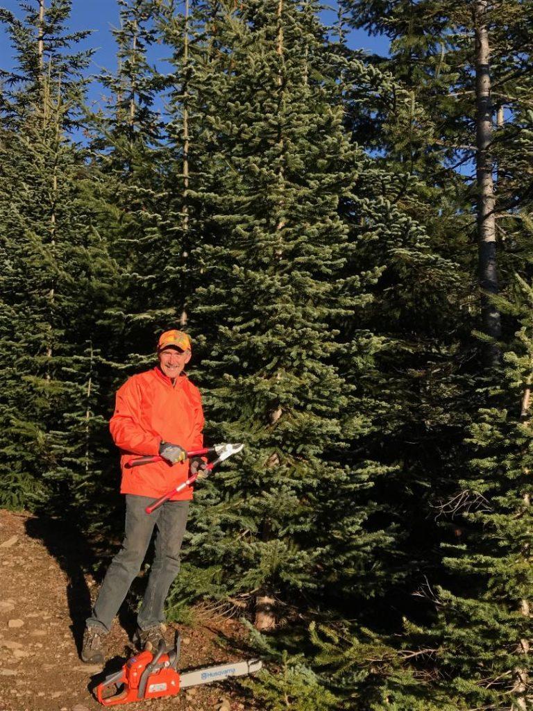 Mike getting ready to harvest subalpine fir Chritmas tree!